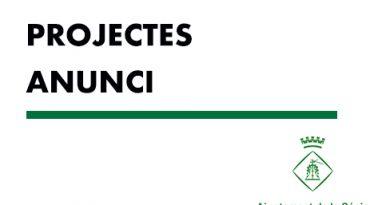 Projecte executiu per millora de camins afectats pel Gloria
