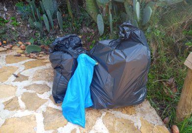 Clean Up' challenge a la Sénia